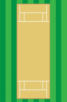 Крикет поле