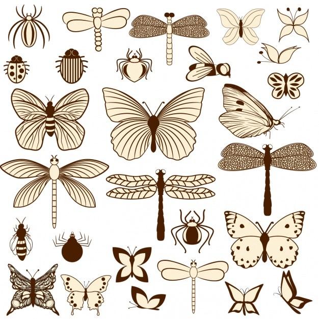 昆虫のデザイン
