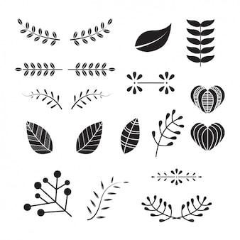 Декоративные листья коллекции