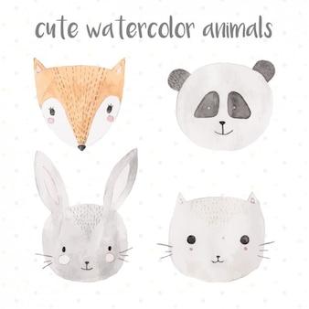 かわいい水彩動物