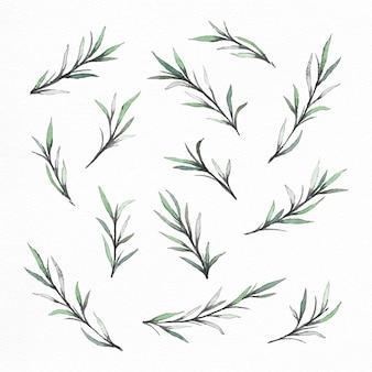 手塗りの水彩の枝と葉