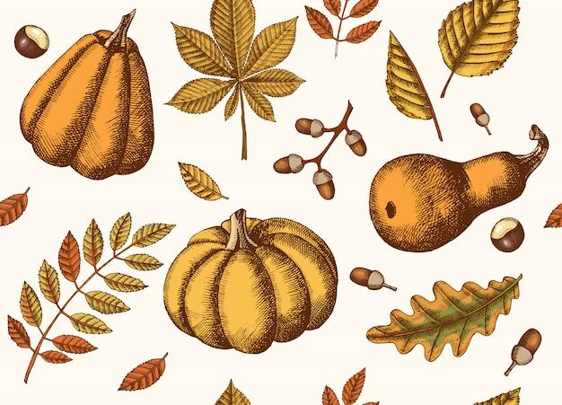 手で秋のシームレスパターンには、葉とカボチャが描かれています。カエデ、カバノキ、クリ、ドングリ、トネリコ、オークの葉。スケッチ。