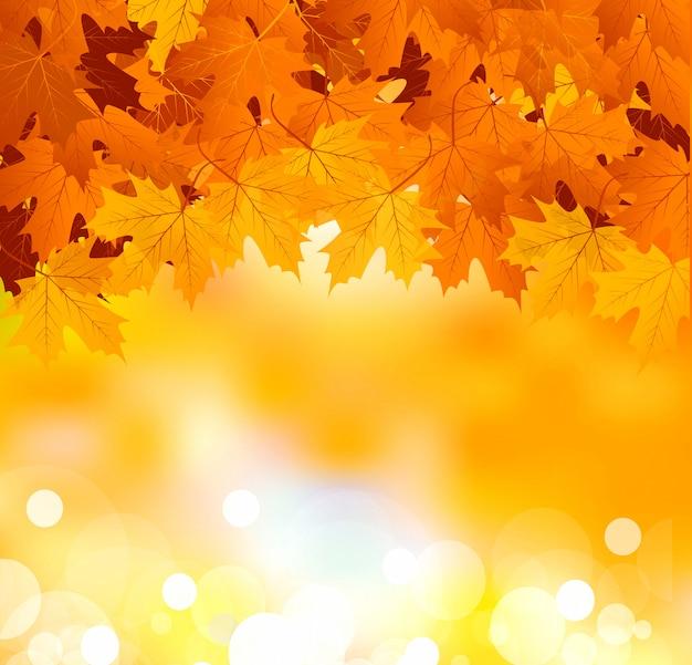 Осенние листья на ярком солнечном фоне