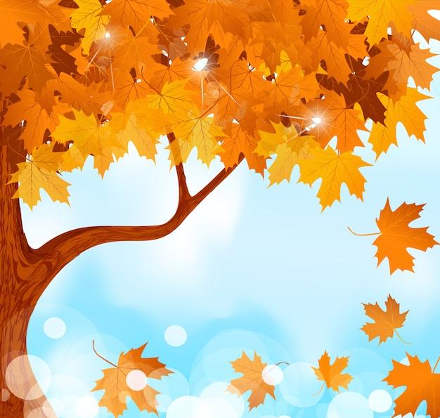 Осеннее дерево кленовые листья на фоне голубого неба