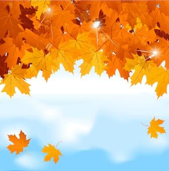 Красные кленовые листья на фоне голубого неба