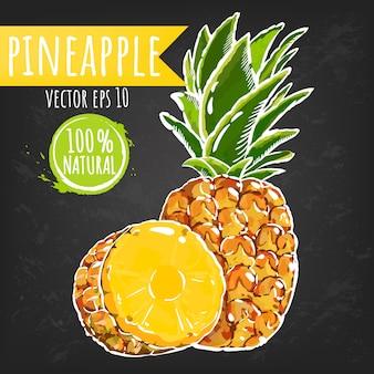 パイナップル。新鮮なフルーツの明るいスケッチスタイル。ジューシーなトロピカルフルーツ。