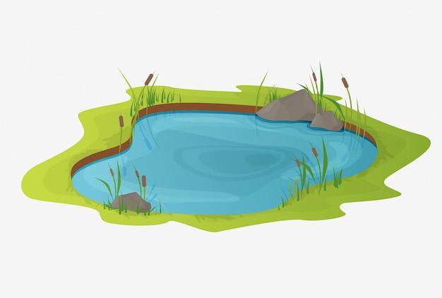 葦のある美しい池。オープンな小さな沼のコンセプト