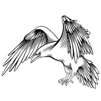 Векторная иллюстрация ворона. набросал маленький ворон. монохромный рисунок от руки. линейная графика. стилизованная черно-белая красивая птица. реалистичная имитация рисования пером. животное искусство.