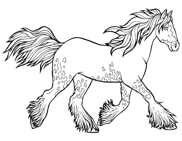 馬はトロットを実行します。塗り絵。馬はトロットを実行します。塗り絵。ティンカーはサラブレッド種の馬です。