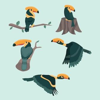 鳥サイチョウは漫画のベクトル図を設定します。