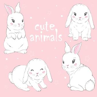 かわいいウサギの漫画イラスト