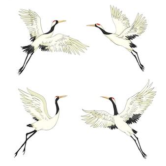 Кран. птица в полете. элемент дизайна. вектор.