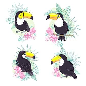 ベクトル形式の素敵なオオハシのイラスト。保育園や学校での子供の教育と楽しみ、および装飾目的のためのかわいいオオハシ鳥の画像。ジャングル動物コレクション
