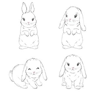 Зайка, кролик.