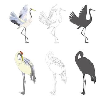飛行中の野鳥。ビンテージスタイルで描かれた刻まれたスケッチ手。