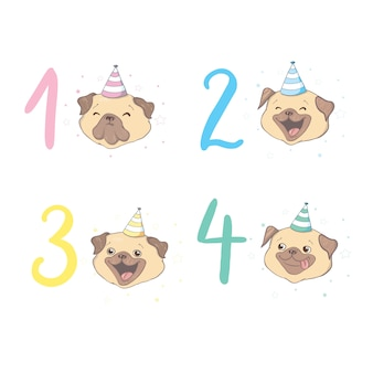 Лицо собаки рядом с цифрами