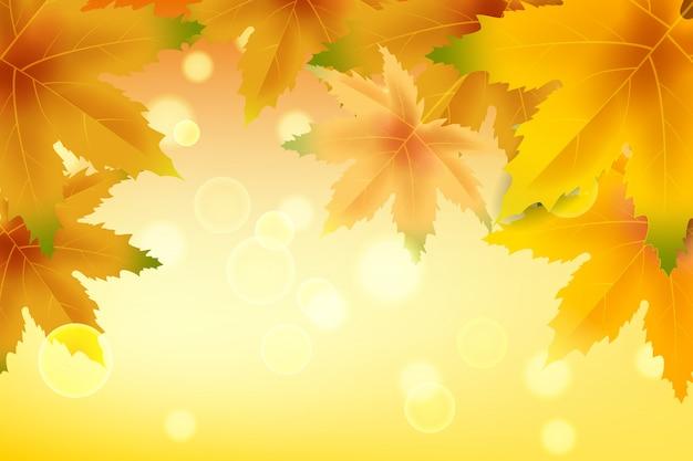 落ち葉と秋の背景。黄色と茶色のカラフルな葉