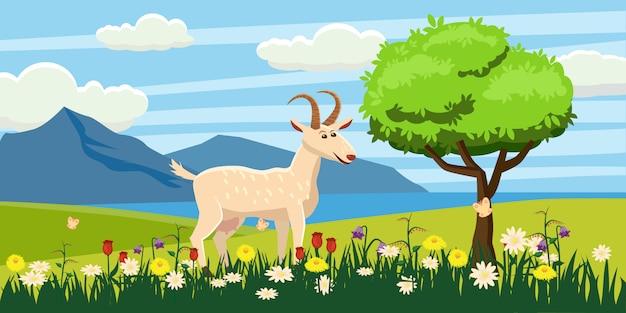 風景、太陽、日の出、花の牧草地で放牧ヤギ
