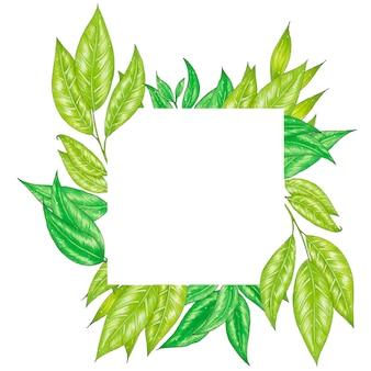 Раскрашенная вручную маркерами цветочная рамка с веточкой, веткой и зелеными абстрактными листьями