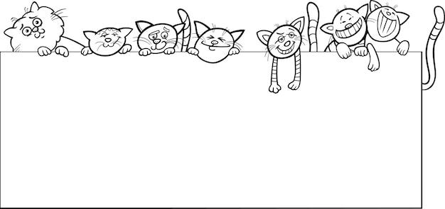 Кошки с рамкой