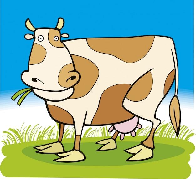Сельскохозяйственные животные: корова
