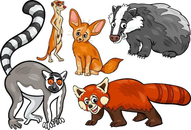 野生動物の漫画のイラストセット