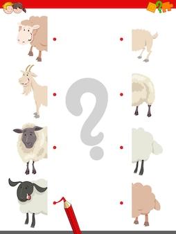 Совпадение половинок овцы