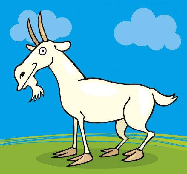 Сельскохозяйственные животные коза