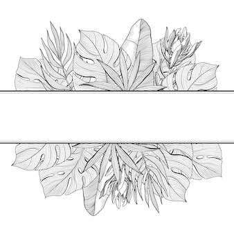 熱帯、ジャングルのヤシの葉、手描きのベクトル図の上部と下部の境界を持つバナー