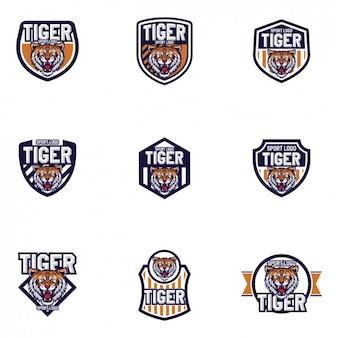 Дизайн тигры шаблоны логотипов