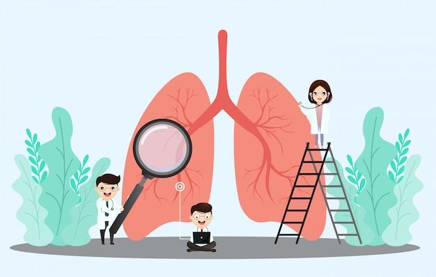 人間の肺。