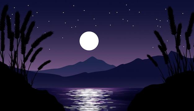 Ночная точка зрения пейзаж с горы, озеро, луна и звезды