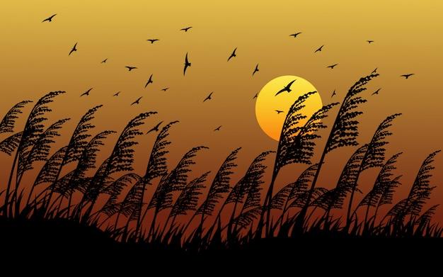 飛ぶ鳥と日没の草のシルエット