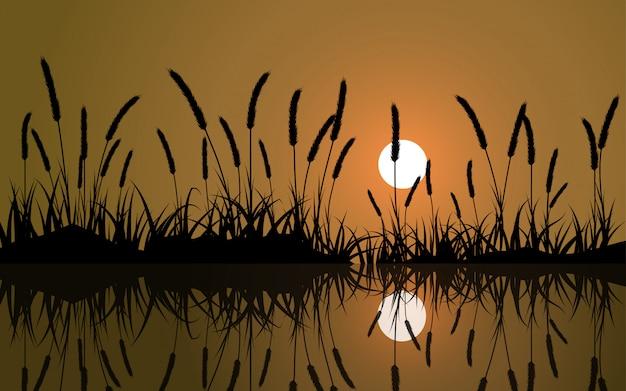 反射と日没の草のシルエット