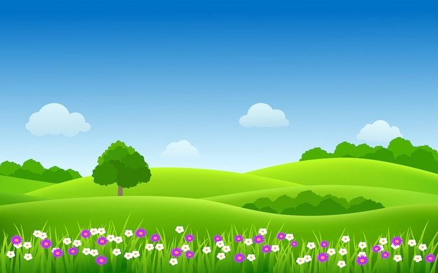 Природа пейзаж сельской местности с яркими цветами