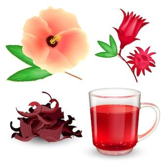ハイビスカスティーセット。ガラスのマグカップ、乾燥茶、包丁、白い背景の上に花のローゼル赤茶。リアルなイラスト。