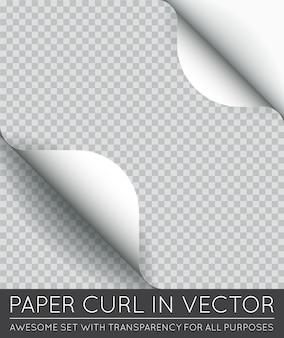 分離された影付きの紙のページカール。
