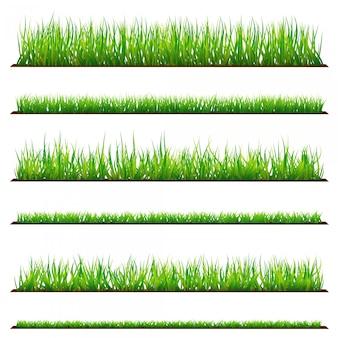 白い背景で隔離の緑の草の背景のセット。