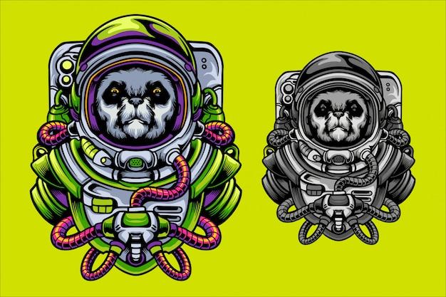 パンダ宇宙飛行士の図