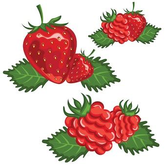 イチゴとラズベリーのイラスト。ベクター