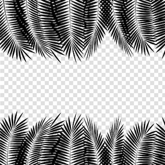 白い背景に黒いヤシの葉