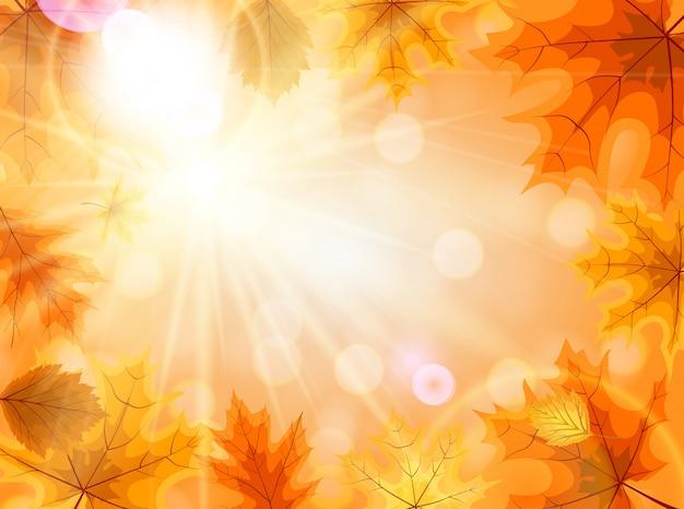 秋の落ち葉と抽象的な背景