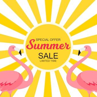 Летняя распродажа концепции с красочным мультфильмом фламинго