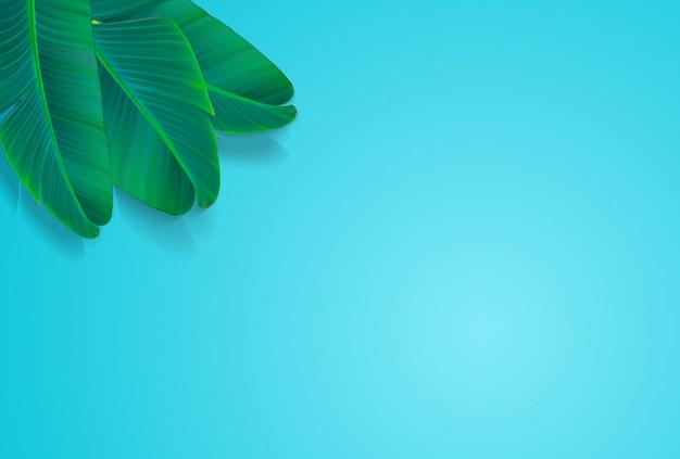 Пальмовый лист векторный фон