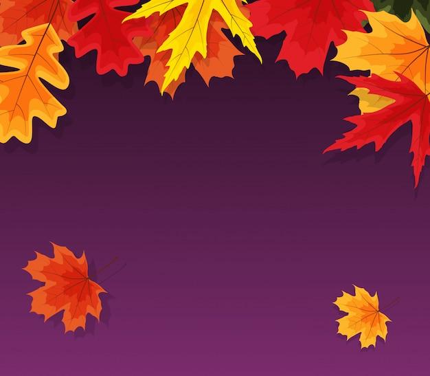 秋の自然の葉。