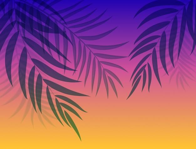 美しいヤシの木の葉シルエット背景ベクトルイラスト