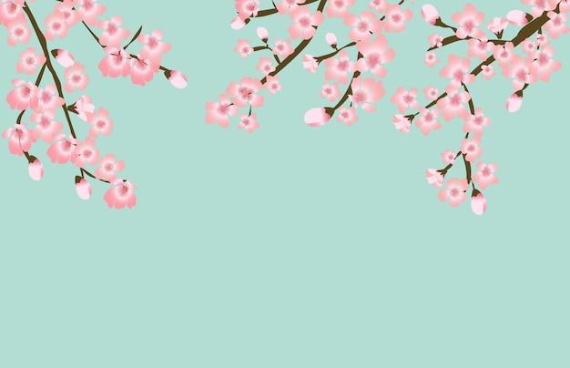 抽象的な花さくら花日本の自然な背景
