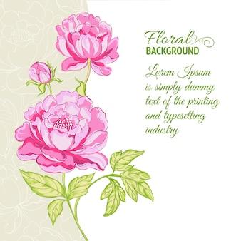 サンプルテキストとピンクの牡丹の背景
