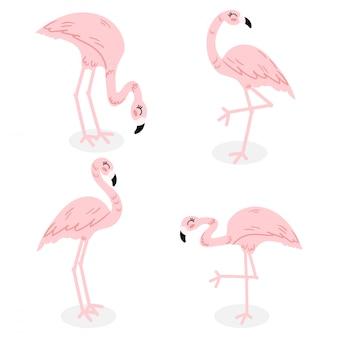 かわいいフラミンゴの漫画のドゥードルベクトルコレクションセット