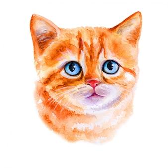 水彩画の小さな赤い子猫